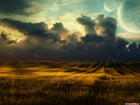 Golden Wheat - wheat, shadow, nature, clouds, sky, field, blue