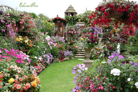 Summer Garden , Flowers \u0026 Nature Background Wallpapers on