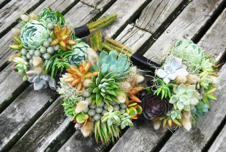 Bouquets - flower, maids, succulents, bouquets