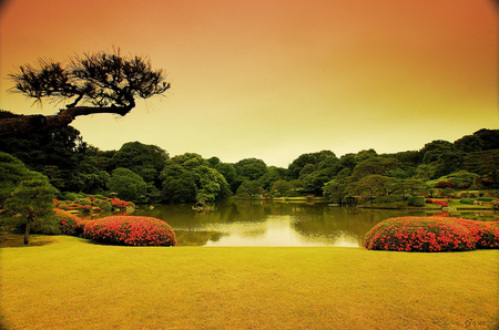 Superbe Japanese Garden Sunset