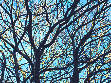the art of trees - paintings, beatiful, forests, trees, blue