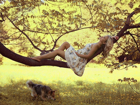 Summer Dream - light, dreamer, summer, friends, nature, dog, sun, bright, yellow, forest, woman, dreaming, young, girl, sunny