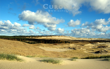 Mosaic of dunes in Curonia - world, lithuanian, kurische, national, curonia, beautiful, magic, neringa, valley, spit, sand, dunes, cultural, heritage, fabulously, list, nehrung, legend, beauty, harmony, unesco, kopos, strict, curonian, unique, park, sahara, reserve, nature, landscape