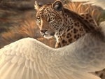 Leopard  has wings  too