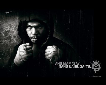 Manny Pacquiao Boxing Sports Background Wallpapers On Desktop