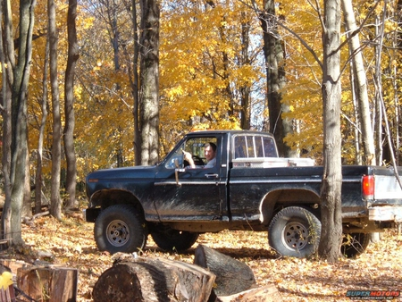 If there is a truck in the woods, does it make a sound? - man, nature, trees, truck