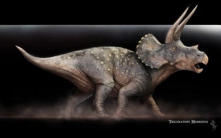 Triceratops Horridus - Vlad Konstantinov