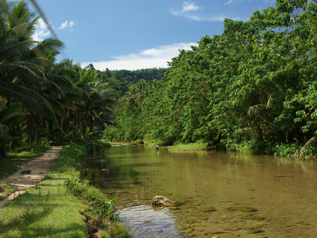 Jungle Nature - pathway, jungle, river, man, trees