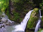 Cascada Valea Galbenei