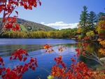 Moose Pond And Mount Pleasant In Autumn Maine