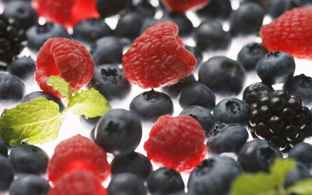 Forest fruits - photography, blackberries, fruits, blueberries, forest, abstract, raspberries