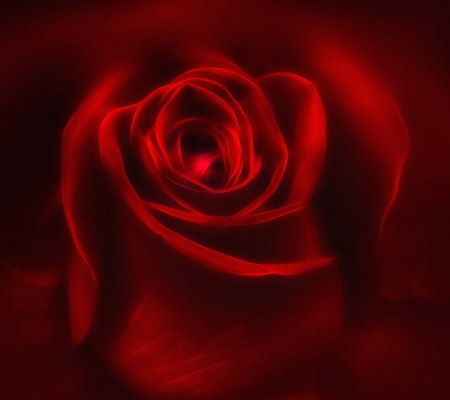 Rose of love flowers nature background wallpapers on - Boy with rose wallpaper ...