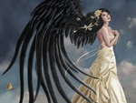 Black wing angel
