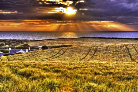 Summer sunrays - image, sun, background, beautiful, clouds, sea, gold, sunsets, fields, sesons, light, amazing, view, golden, sunrays, water, summer, hdr, nature, landscape, coast