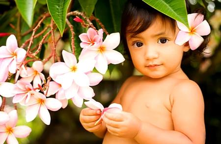 Plumeria Princess - plumeria, keiki, hawaiian, child, blossoms, baby