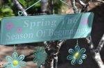 It's Spring in Qld Australia yoo hoo
