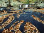 Tellico-River