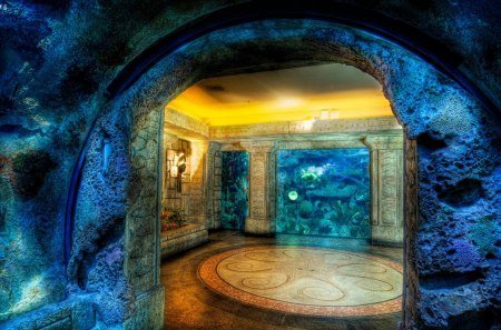 Shark Reef Aquarium - reef, shark, aquarium, cave