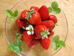 Luscious Strawberries in a bowl