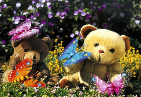 teddy with butterfly - flowers, teddy, butterfly