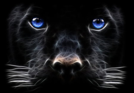 black panther - panther, animals, face, black, jaguar, eyes