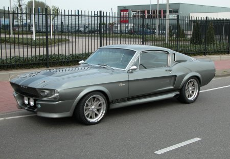 1969 Shelby Mustang >> 1969 Shelby Mustang Gt500 Ford Cars Background Wallpapers On