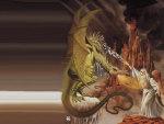 Wizard versus Dragon