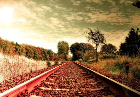 Rails to fall Colors - autumn, railroad, train, sky, fall
