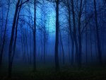 dark-blue-forest