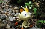 Wandering_Meowth