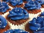Blue muffins field