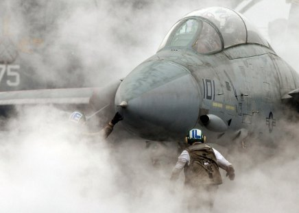 Out of the Smoke - f-14, grumman, aircraft, plane, f14, carrier, smoke, jet, tomcat
