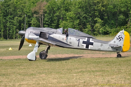 Focke Wulf - german, ww2, 190, wulf, focke, plane, antique, luftwaffe, wwii, classic