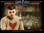 Viktor Krum And The Triwizard Cup