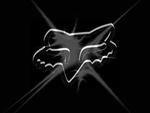 Fox logo 2