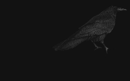 crow - teaser, animal, crow, illusion
