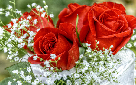 Red Roses Hdr Flowers Nature Background Wallpapers On Desktop