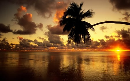 tropical gold - sun, golden, ocean, sunset, sky, clouds, sea, beach, photography, sand, water, beauty, nature, sunshine