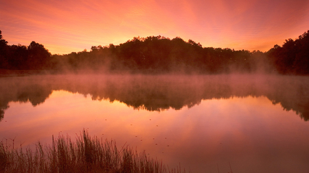 orange lake - beauty, pink, water, yellow, sun, wet, photography, sky, sunset, fog, trees, lake, nature