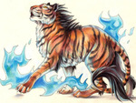 The flames of the tiger