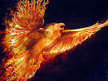 Phoenix - flames, fire, ancient, bird, mythology, rise