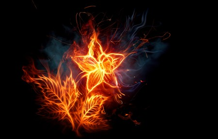 flower of flame - fire, widescreen, flame, 3d, flower