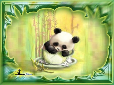 Cute panda bear in a cup - Bears