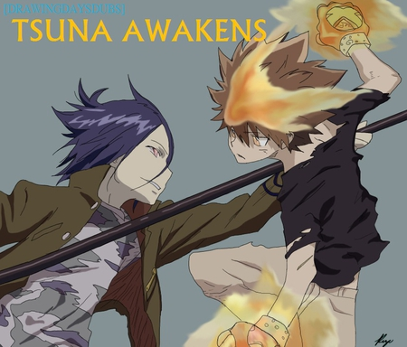 Tsuna Awakens Other Anime Background Wallpapers On Desktop Nexus Image 812012