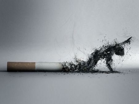 Cigarettes..mere poison - death, health, poison, cigarette