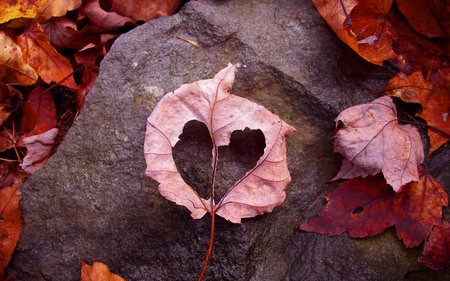 Autumn Heart - leaf, heart, rock, photography, leaves, nature, autumn