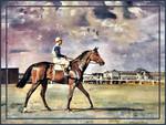 Mack Willer - Horse 5