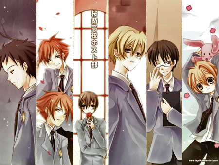 ouran high school host club - school, club, ouran, host, anime, high, other