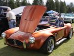 Cobra 1965 in Radium Hot Springs car show 55