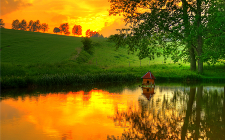 Reflection - colorful, grass, peaceful, lake, tree, path, landscape, way, autumn, sunrise, sunset, sky, colors, splendor, water, nature, trees, fall, yellow, reflection, beauty, beautiful, lovely, yellow sky, clouds, field, pretty, green, view, autumn colors